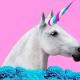 Israeli Big Data unicorn Bright Data, is breaking down barriers of public web space – International IT recruitment